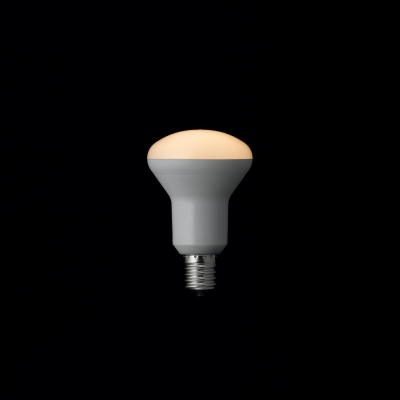 YAZAWA(ヤザワ) R50ミニレフ形LED電球 電球色 E17 非調光タイプ LDR4LHE17