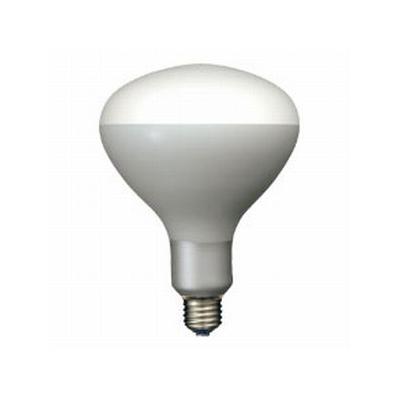 岩崎電気 写真照明用アイランプ フラッド(散光形) 300W E26  PRF300W