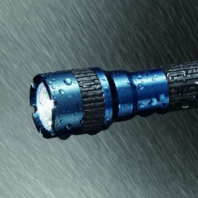 YAZAWA(ヤザワ) 【在庫限り】LEDアルミフラッシュライト 50lm  L6A504GB 画像3