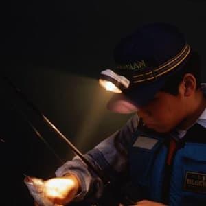 旭電機化成 ポンヘッドランプ 電池式 2.5V0.3A豆球 サイズ70×80×50mm バンド長さ調節可能  ACA-3201 画像2