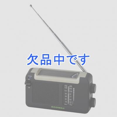 YAZAWA(ヤザワ)  BL109RMSDBK