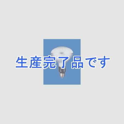 岩崎電気  PRF500WD