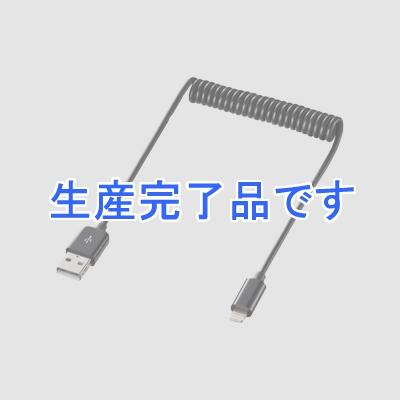 サンワサプライ  KB-IPLTC10BK