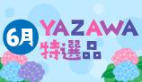 6月YAZAWA特選品