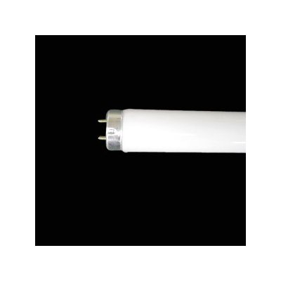 NEC(エヌイーシー)  FLR40SEX-D/M-SHG