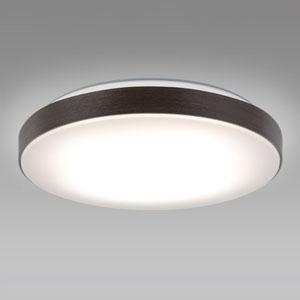 NEC LEDシーリングライト ~12畳用 調光・調色タイプ 昼光色+電球色 リモコン付 ダークブラウン HLDC12233SG