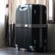 YAZAWA(ヤザワ) スーツケースベルトグレー TVR56GY 画像3
