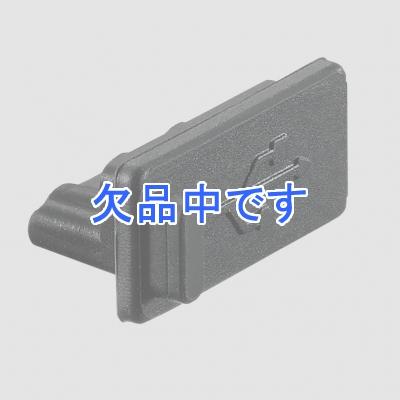 YAZAWA(ヤザワ)  H8USBCAP