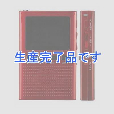 YAZAWA(ヤザワ)  TV04RD