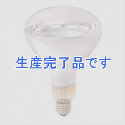 岩崎電気  IR220V125WRH