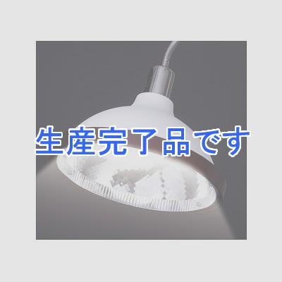 YAZAWA(ヤザワ)  CFEG100ED34WH