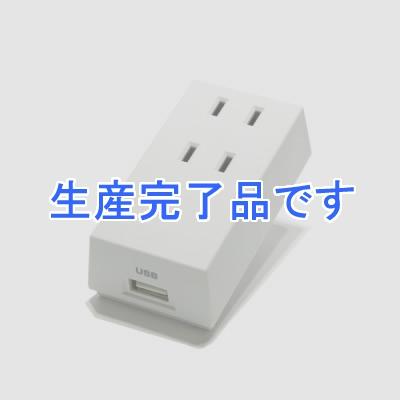 YAZAWA(ヤザワ)  HT300WUSB