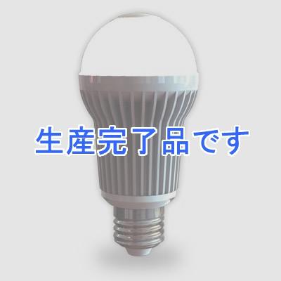 アイリスオーヤマ  LDA6LHS