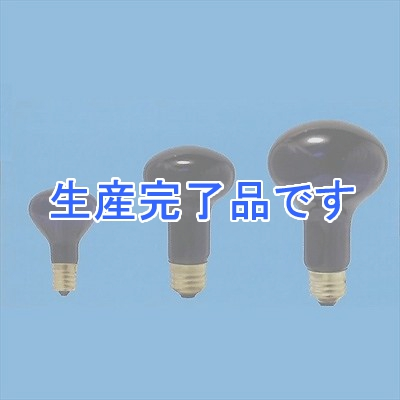 アサヒ  R62E26110V60W-100SET