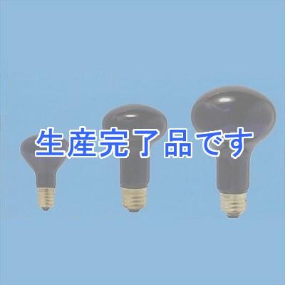 アサヒ  R62E26110V60W-10SET