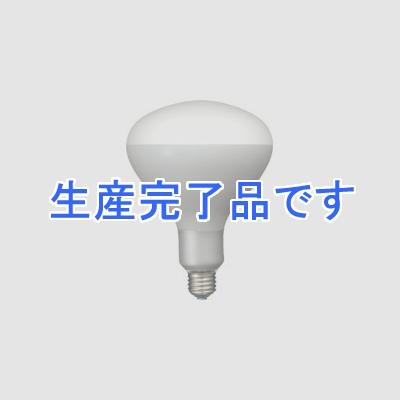 岩崎電気  PRF500WD_set