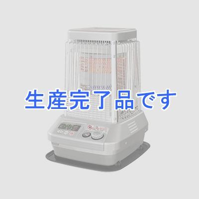ダイニチ  FM-197F(S)